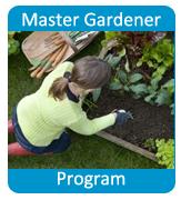 MG Program